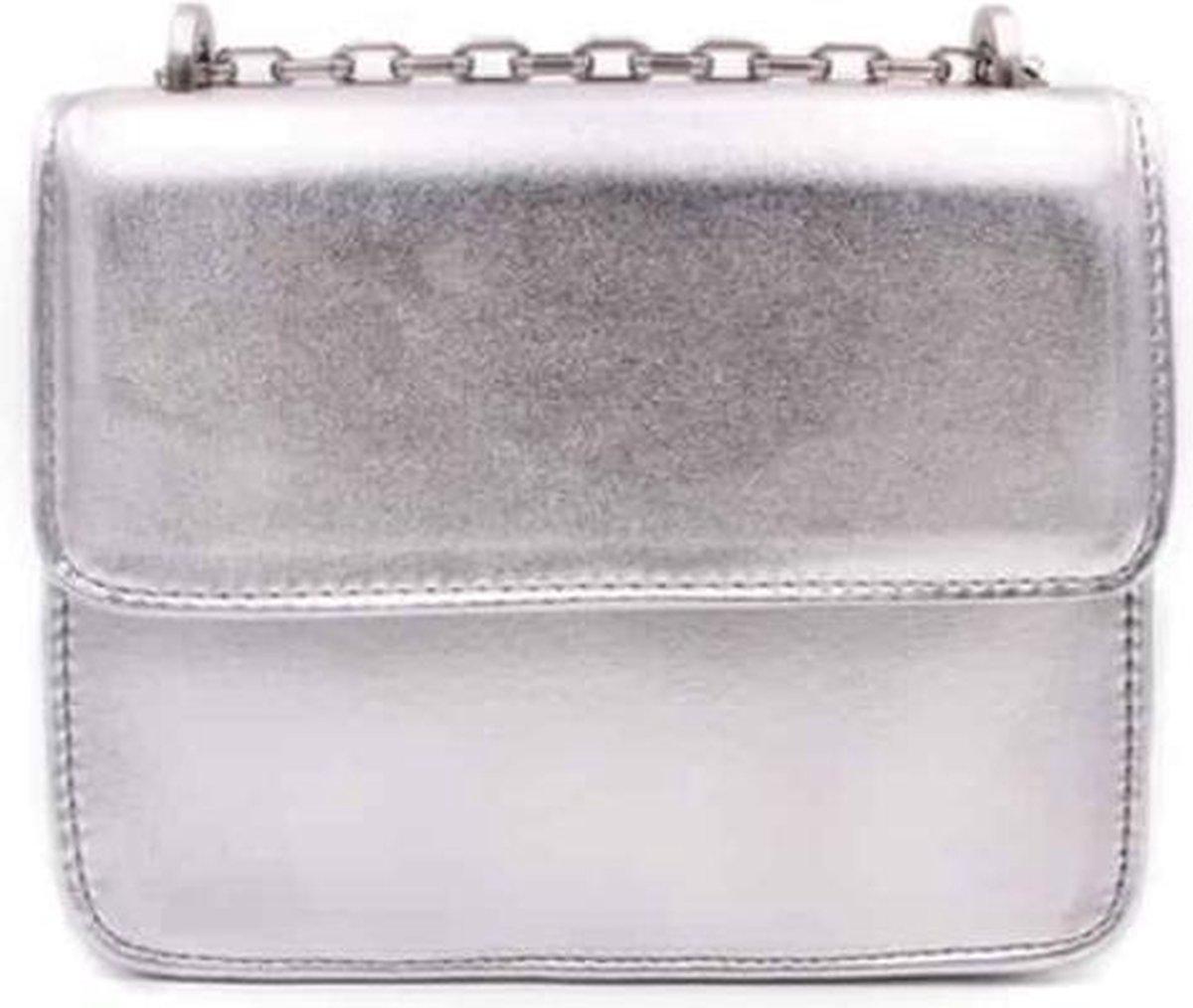 Denise Roobol - Mini Cruise Bag Silver - Schoudertas - Crossbody Bag